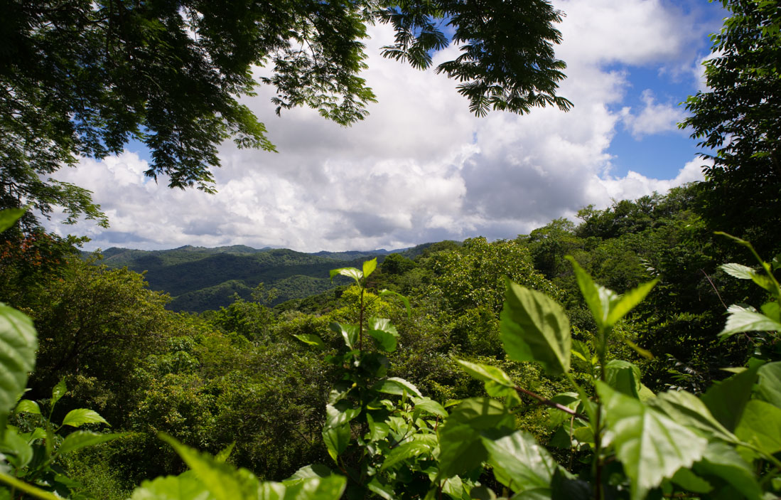 Nosara Costa Rica - 1 Bedroom Home, Great Investment, Lots of Room to Build your Dream House on remaining land.