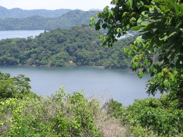 Paquera Costa Rica - Finca Gigante – Amazing Ocean View Property! Lots from 2 USD / m2!!!